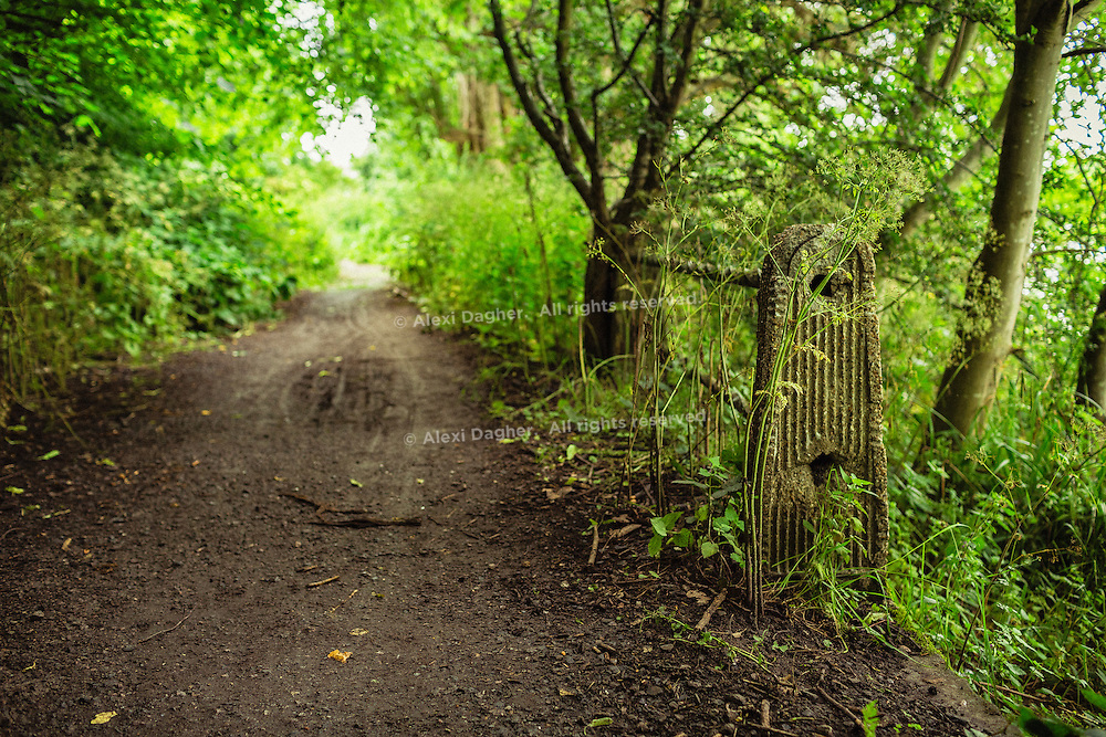 Thames Path National Trail - Hounslow, London, England, 2016