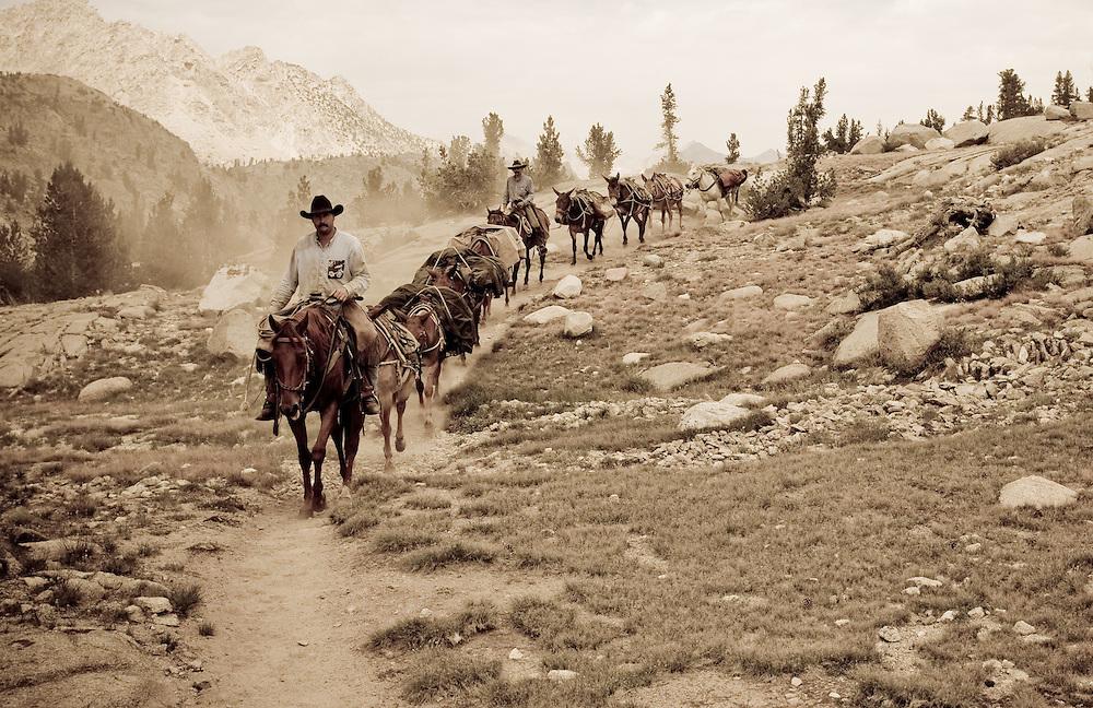 Traveling on horseback in Sequoia National Park, Sierra Nevadas of California