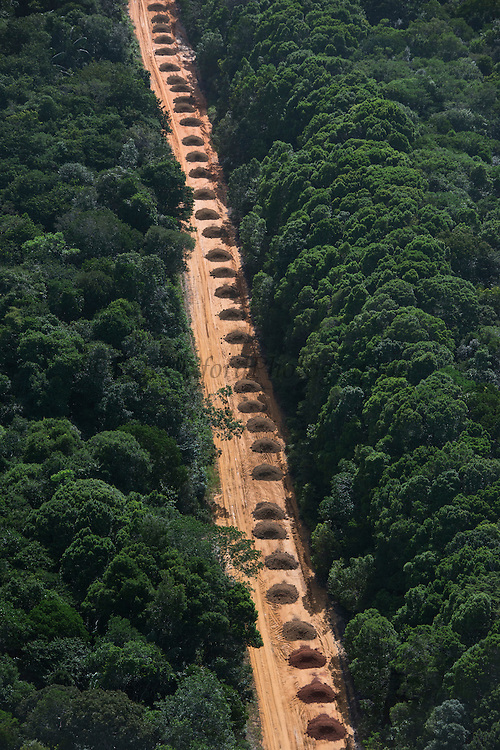 Dirt Road through rainforest<br /> GUYANA<br /> South America