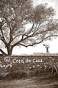Coto de Caza Community, Orange County, California