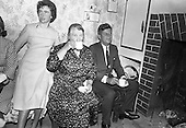 John F. Kennedy visits his ancestral homestead at Dunganstown, Co. Wexford - 27/06/1963