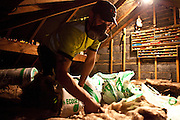 Loft insulation being installed in a roof in Kirklees, UK.