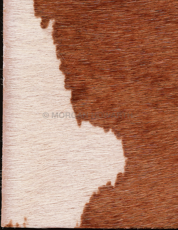 cow hide brown and white with fur
