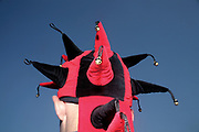 Man in a red and black jester hat, Ashton Court Festival, 2006