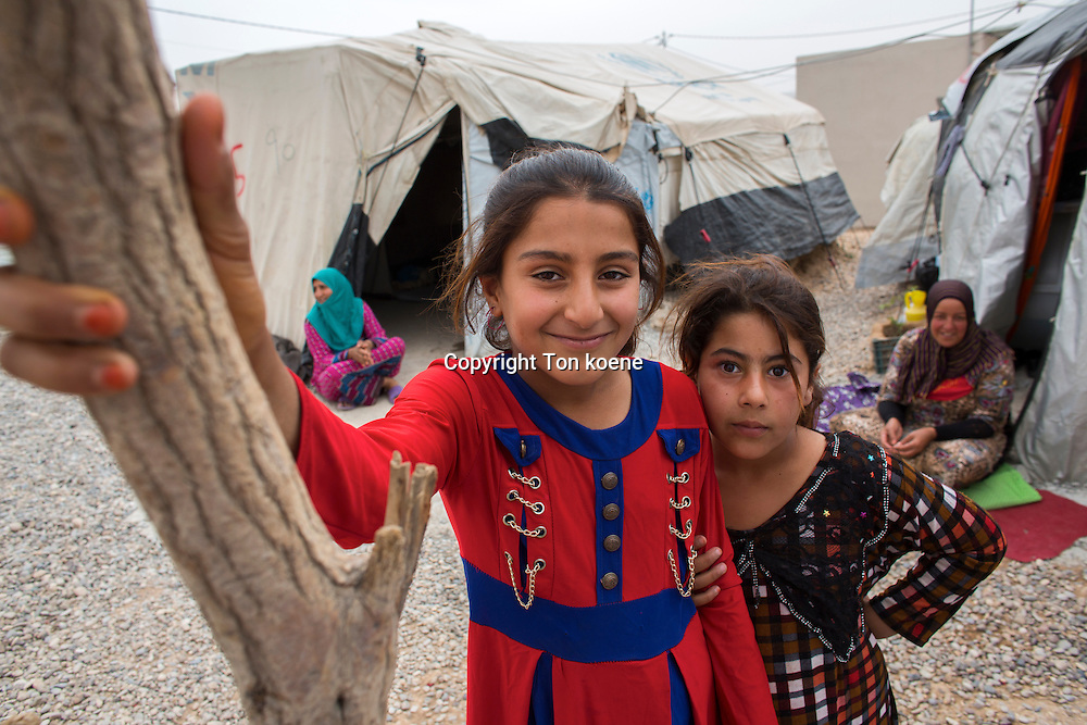 refugee children in Anwald refugee camp, Northern Iraq where 8000 Iraqi people have found refuge.