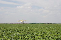 Crop dusting airplane in South Texas