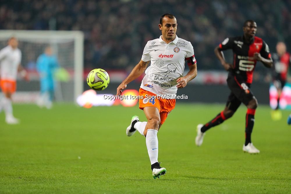 HILTON - 06.12.2014 - Rennes / Montpellier - 17eme journee de Ligue 1 -<br />Photo : Vincent Michel / Icon Sport