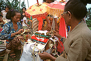 INDONESIA, BALI, CEREMONIES cremation ceremony, family preparing ashes