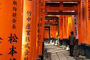 Fushimi Inari Shrine, Kyoto, Honshu, Japan