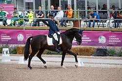 Den Dulk Nicole, NED, Wallace NOP<br /> FEI European Para Dressage Championships - Goteborg 2017 <br /> © Hippo Foto - Dirk Caremans<br /> 21/08/2017,