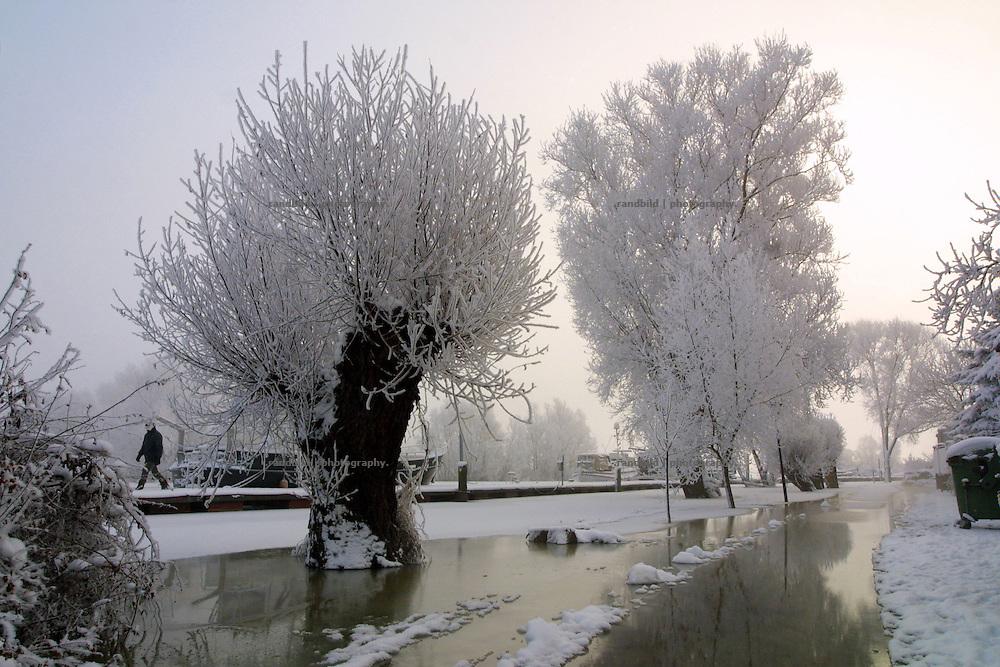 Im Yachthafen der kleinen niedersächsischen Elbestadt Hitzacker hat das Winterhochwasser die Wege überspült. Rauhreifüberzogene Kopfweiden stehen im spiegelblank gefrorenen Wasser. Frozen Willows in Hitzacker, Germany.