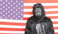 Portrait of young man dressed up in gorilla costume against American flag