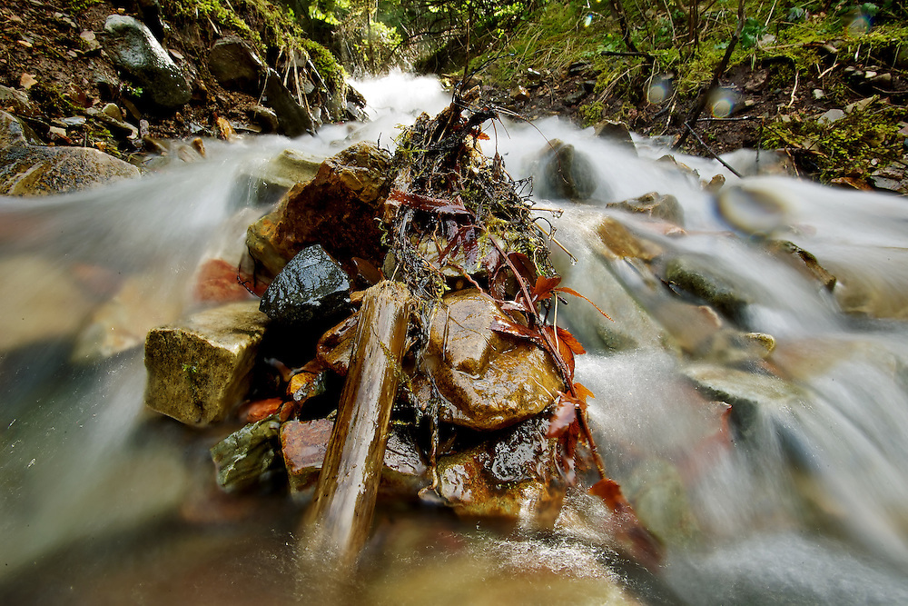 Melting snow runoff cascades over rocks in a creek on Canfield Mountain during the 40-plus degree weather Wednesday.
