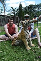 4-16-17 1:30 Tiger Swim