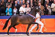Igor <br /> Kampioen Dressuurhengsten<br /> KWPN Hengstenkeuring 2016<br /> © DigiShots