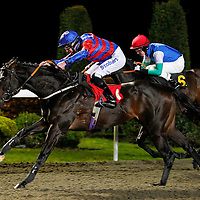 Stonefield Flyer and T Eaves winning the 7.15 race