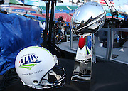 TAMPA, FL - JANUARY 27: The Lombardi Trophy is on display as the AFC Pittsburgh Steelers speak to the media during Super Bowl XLIII Media Day at Raymond James Stadium on January 27, 2009 in Tampa, Florida. ©Paul Anthony Spinelli