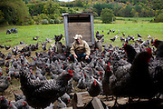 Organic farmer Joel Salatin sits with some free-range chickens at Polyface Farms in Swoope, Virginia on Monday, October 3, 2011.