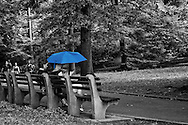 keeping cool under a blue umbrella, with a heat index of 109℉ ( 42℃) in Central Park.