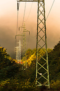 Power Line across the forest