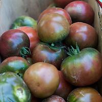 A basket of  'Black Brick' heirloom tomatoes
