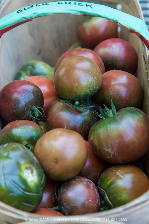 A basket of  'Black Brick' heirloom tomatoes