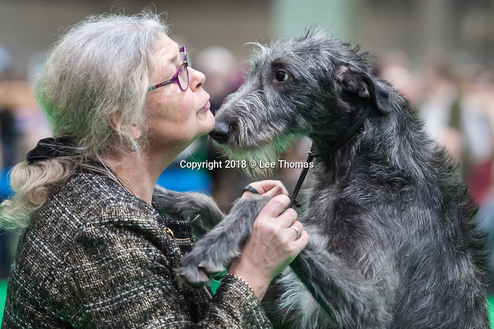 NEC, BIRMINGHAM, ENGLAND, UK. 9th MARCH 2018. Pictured:  An Irish Wolfhound owner displays her affection. / First held in 1891, Crufts is said to be the largest show of its kind in the world, the annual four-day event, features thousands of dogs, with competitors travelling from countries across the globe to take part and vie for the coveted title of 'Best in Show'.  // Lee Thomas, Tel. 07784142973. Email: leepthomas@gmail.com  www.leept.co.uk (0000635435)