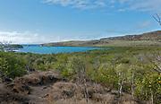 The island of Santa Fe (Barrington) in Galapagos, overlooking Barrington Bay, a common landing site.