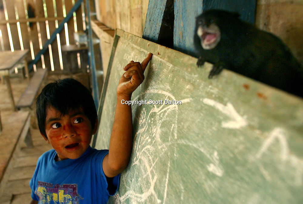 A young boy plays with a monkey in the Achuar Indian village of Pumpuentsa in Ecuador's Amazonian jungle on Tuesday, October 28, 2003. Energy companies are expanding their operations into some of the world's last undisturbed ecosystems, searching for oil in the flat green forest of Ecuador's Amazon region.(Photo/Scott Dalton)