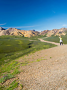 A female tourist enjoys her view of Polychrome Basin, Denali National Park, Alaska.