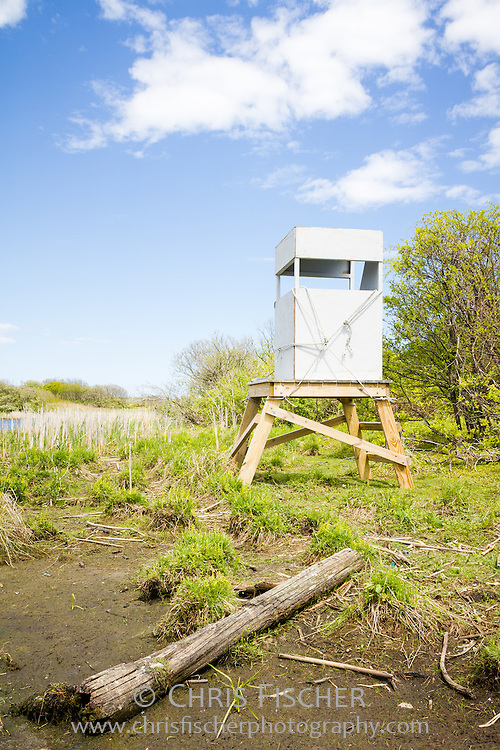 The newly assembled bird observation blind sits aside the pond awaiting its first use. The new observation blind joins several others used by researchers to observe bird behaviors on Stratton Island, Maine.