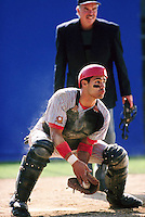 Catcher at home plate --- Image by © Jim Cummins/CORBIS