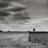 Land & Sky, Suffolk