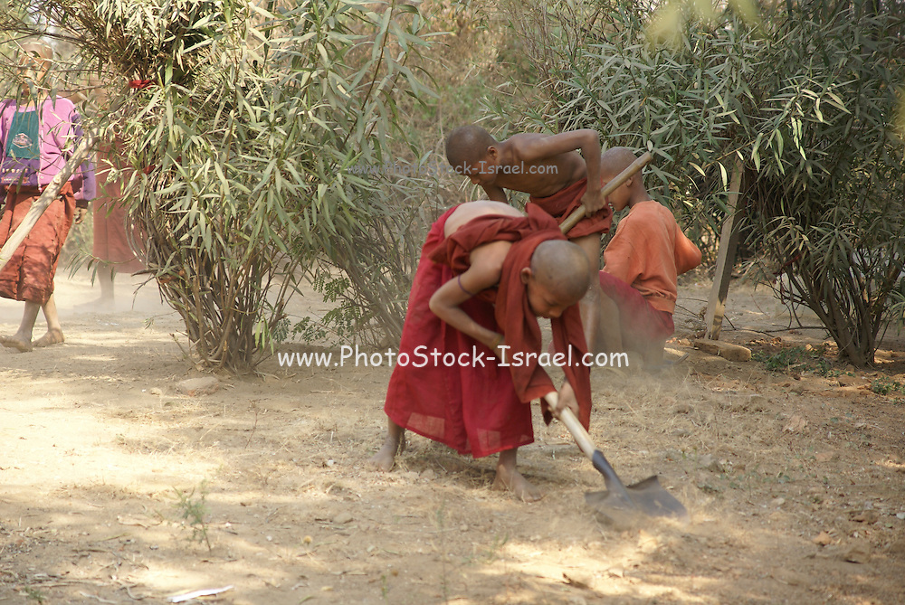 Myanmar, Mingun Boy toils the land