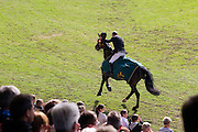 Michael Whitaker - GIG Amai<br /> World Equestrian Festival, CHIO Aachen 2012<br /> © DigiShots