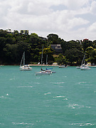 View of sailboats moored in Putaki Bay, Waiheke Island, New Zealand.