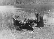 Cowichan woman putting tule (rushes) into boat, c1910.  Photograph by Edward Curtis (1868-1952).