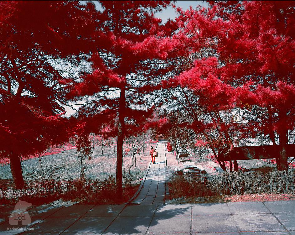 Rural scene in spring, in North Hamgyong province.