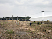 Workers remove radiation contaminated shrubs and foliage from land around Tomioka Station, Japan. Over 10,000 people are carrying out decontamination work 6 days a week in an unprecedented effort to make the Fukushima region liveable again.