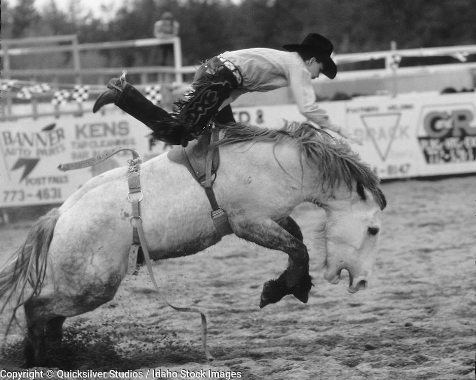 Bucking cowboy, Rodeo. Idaho