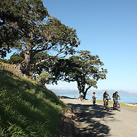 mountain biking photos coromandel peninsula