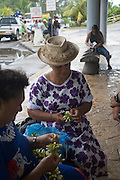 Lei making, Moorea, French Polynesia
