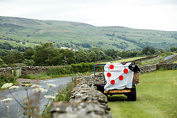 A polka dot sheep sign is displayed in a field along the Stage 1 route in the Yorkshire Dales - Photo mandatory by-line: Rogan Thomson/JMP - 07966 386802 - 04/07/2014 - SPORT - CYCLING - Yorkshire - Le Tour de France Grand Depart Previews.