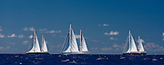 Zenji, Rosehearty, Silencio sailing in the St. Barth's Bucket Regatta.