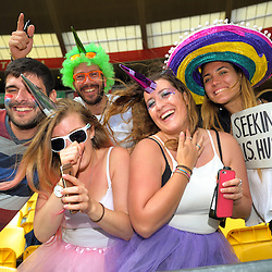 Costumed fans. Day two of the 2017 HSBC World Sevens Series Wellington at Westpac Stadium in Wellington, New Zealand on Sunday, 29 January 2017. Photo: Dave Lintott / lintottphoto.co.nz