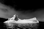 Greenland Icebergs, Seascapes Coastline, Toogood Arm, NL, Canada