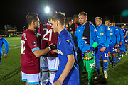Mascot during the The FA Cup match between AFC Wimbledon and West Ham United at the Cherry Red Records Stadium, Kingston, England on 26 January 2019.