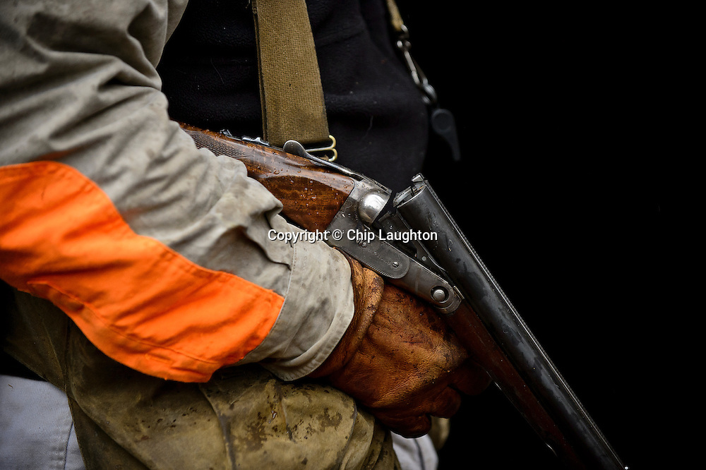 parker shotgun stock photo image