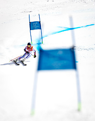 PYEONGCHANG-GUN, SOUTH KOREA - FEBRUARY 18: Ted Ligety of the United States competes during the Alpine Skiing Men's Giant Slalom at Yongpyong Alpine Centre on February 18, 2018 in Pyeongchang-gun, South Korea. Photo by Ronald Hoogendoorn / Sportida