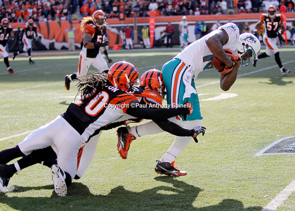 Miami Dolphins wide receiver Brandon Marshall (15) catches a pass and gets tackled by Cincinnati Bengals cornerback Morgan Trent (25) and Bengals safety Reggie Nelson (20) during the NFL week 8 football game against the Cincinnati Bengals on Sunday, October 31, 2010 in Cincinnati, Ohio. The Dolphins won the game 22-14. (©Paul Anthony Spinelli)